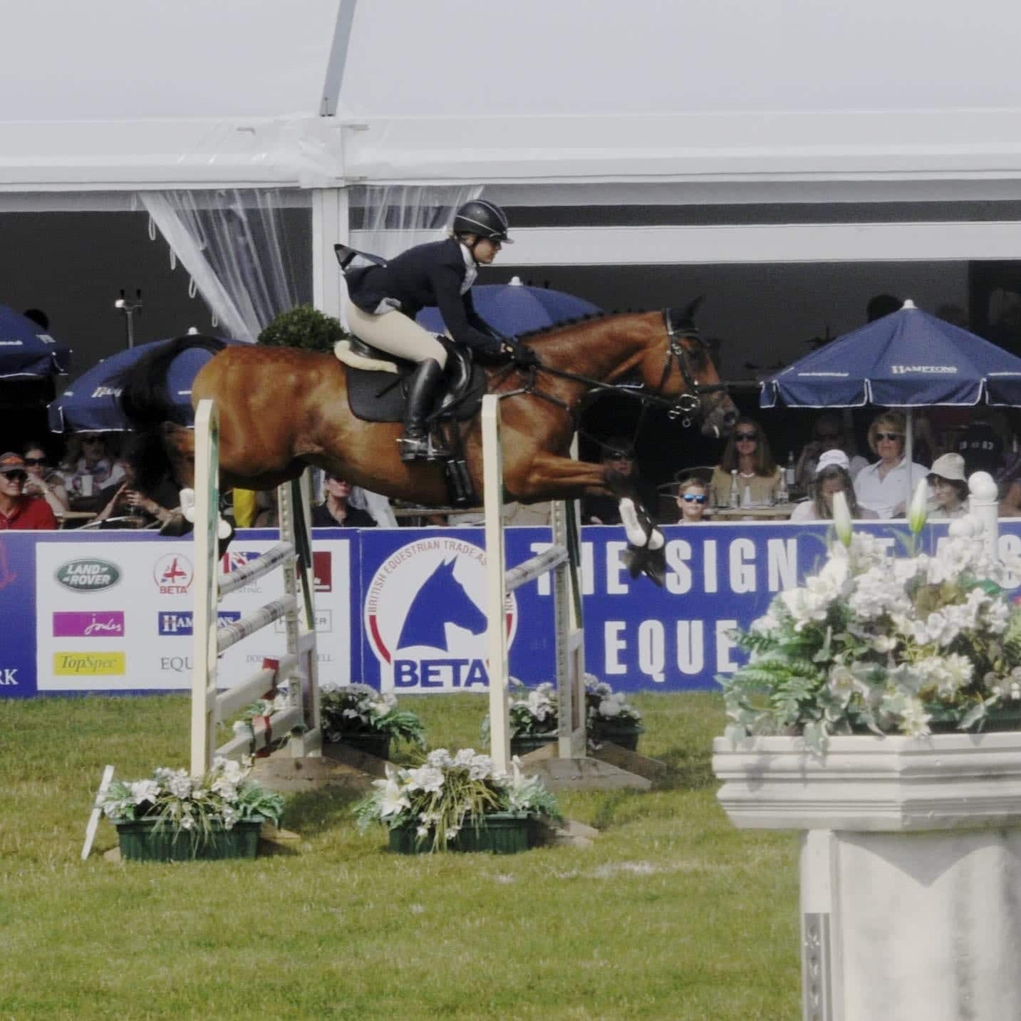 Equestrian main page